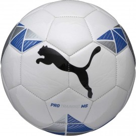 Puma PRO TRAINING MS BALL
