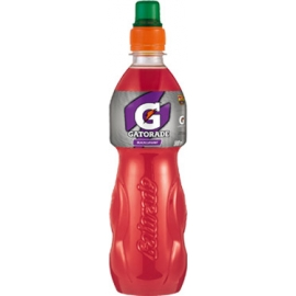 Gatorade 0,5 PET BLACKCURRANT